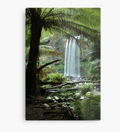 Hopetoun Falls, Otway Ranges forrest Metal Print