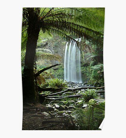 Hopetoun Falls, Otway Ranges forrest Poster