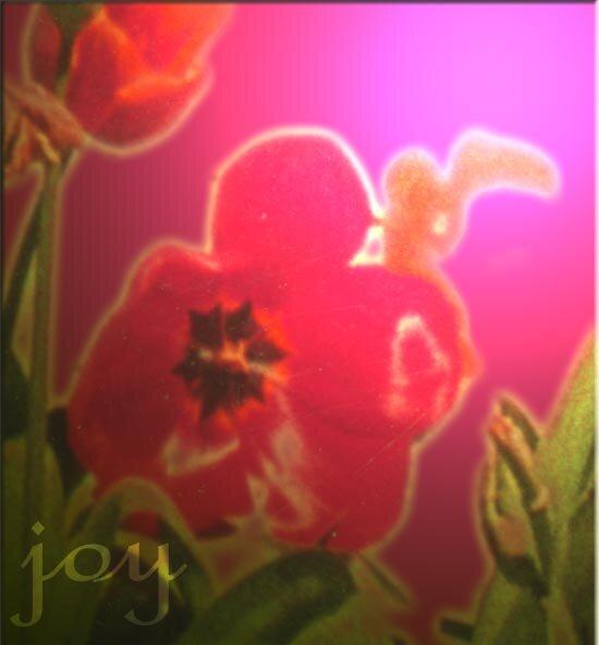 'joy' 2003 by Anna