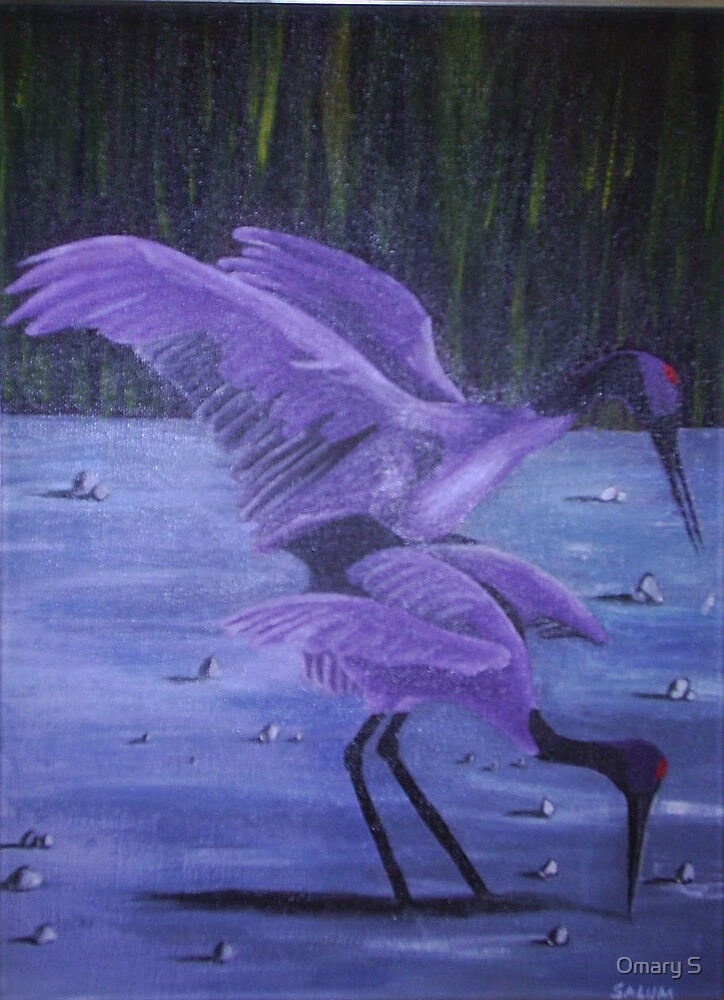 Cranes - Moment of mating by Omary S