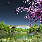 Cherry Tree River Bridge by Walter Colvin