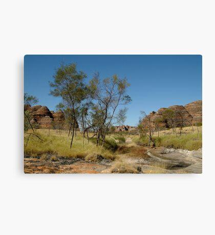 Bungle Bungles,Outback W.A. Canvas Print