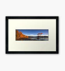 Lake Wanaka Framed Print