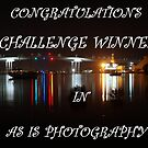 Challenge Banner (As is Photography) by W E NIXON  PHOTOGRAPHY