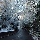winter drive by Devan Foster
