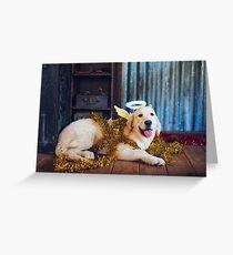 Colour Christmas Angel-dog Greeting Card