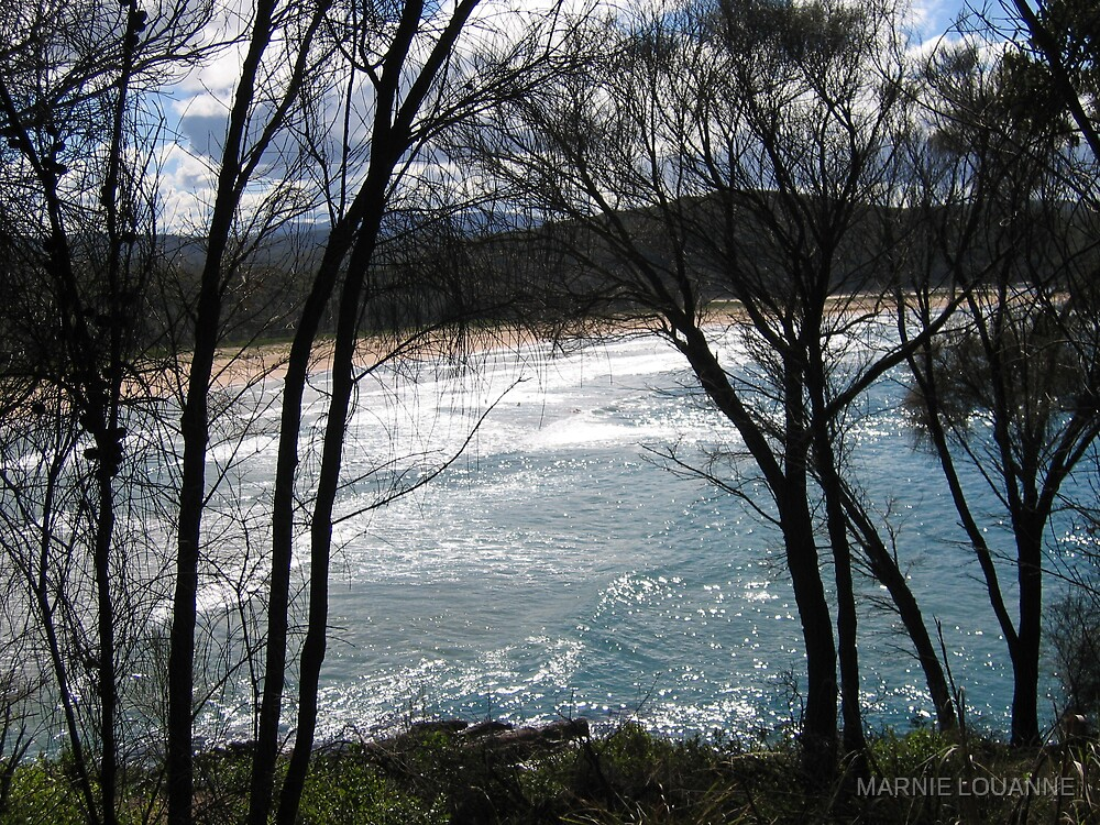 Mimosa Rocks by MARNIE LOUANNE