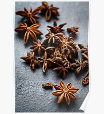 Anise star spice close-up  Poster