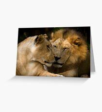 Feline Romance Greeting Card