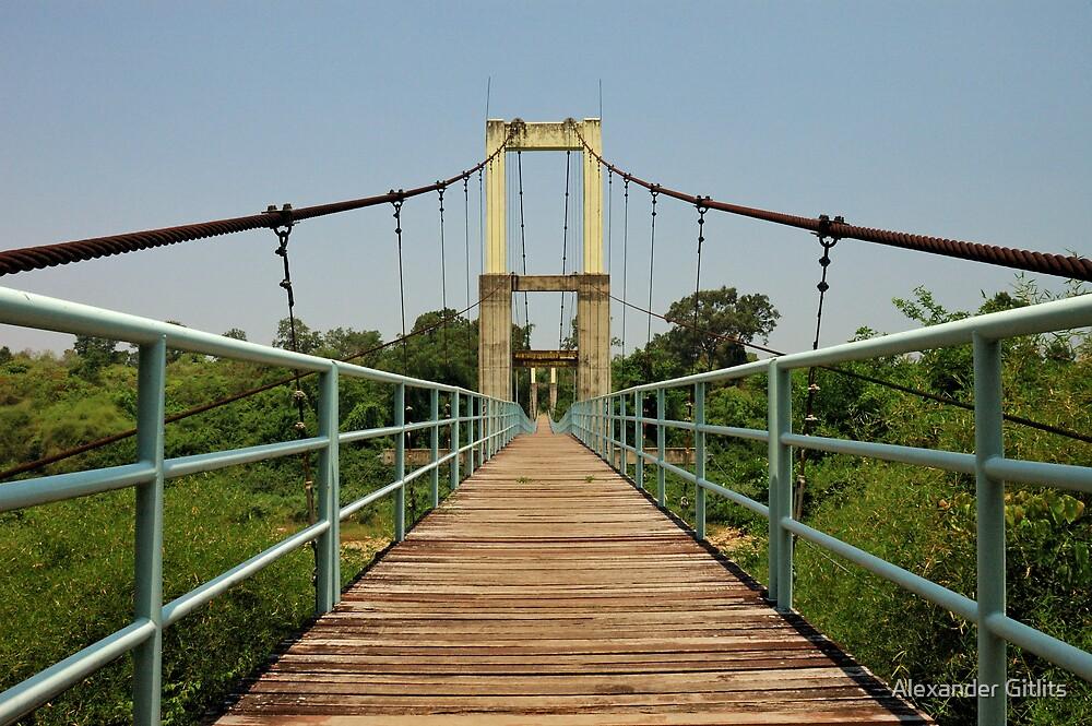 Suspension bridge by Alexander Gitlits
