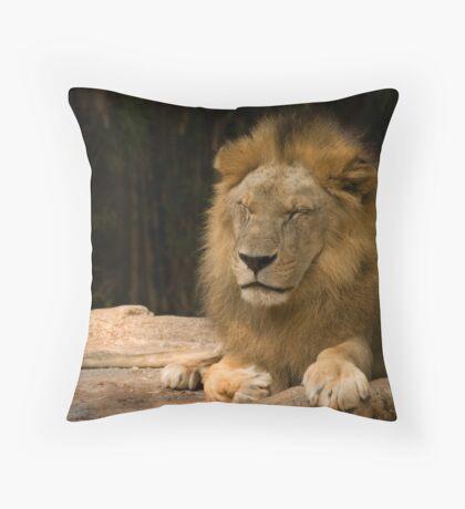 Time for a Royal Nap Throw Pillow