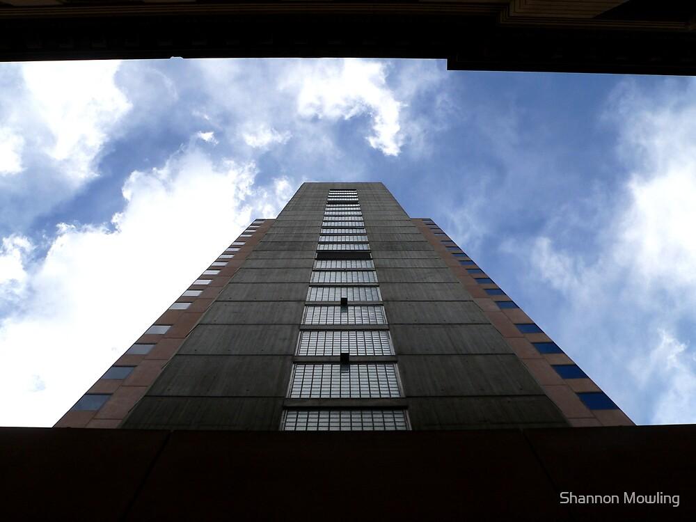Upwards by Shannon Mowling