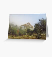 The Fog Lifts Greeting Card