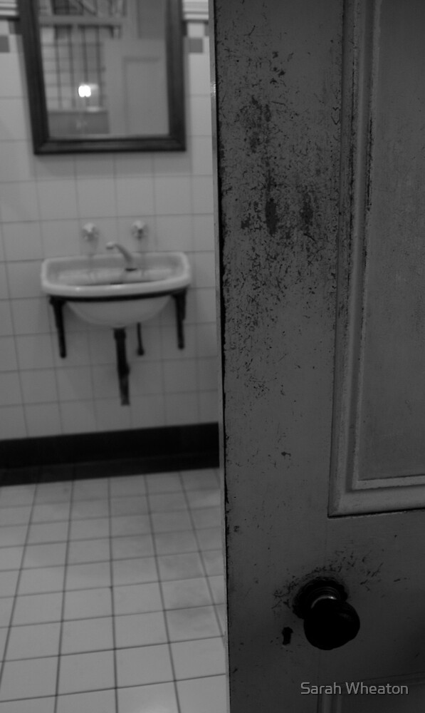 powder room door by Sarah Wheaton