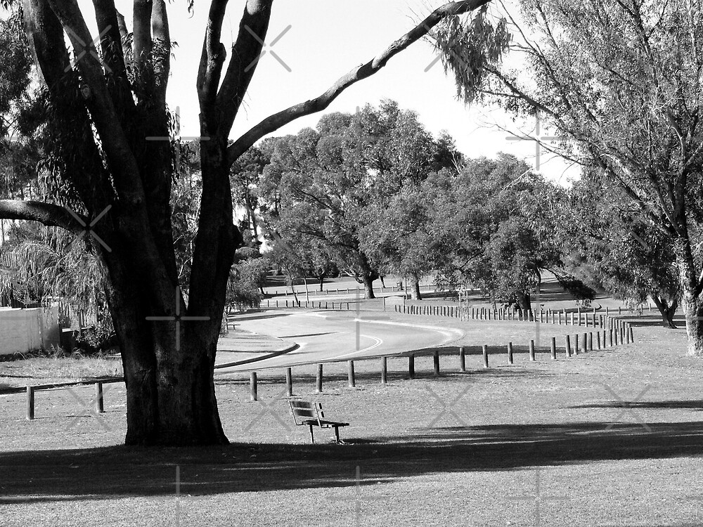Empty Park (B&W) by Sandra Chung