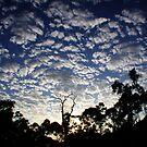 Cloud Burst by Lee Burgess