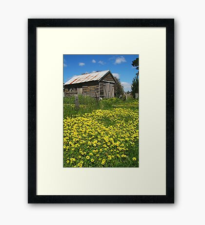 Yellow Daisies Snake Valley Framed Print