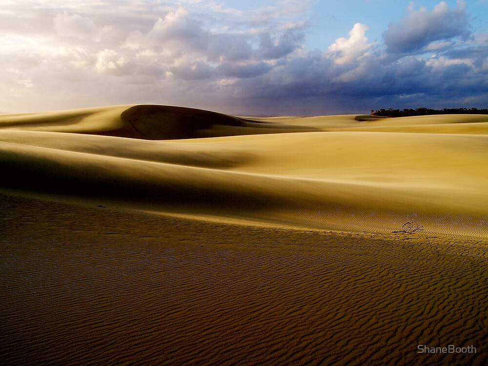 Thurra Dunes by ShaneBooth