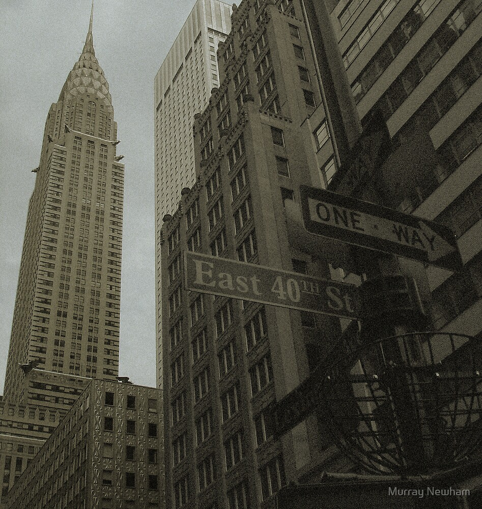 Industrious New York City by Murray Newham