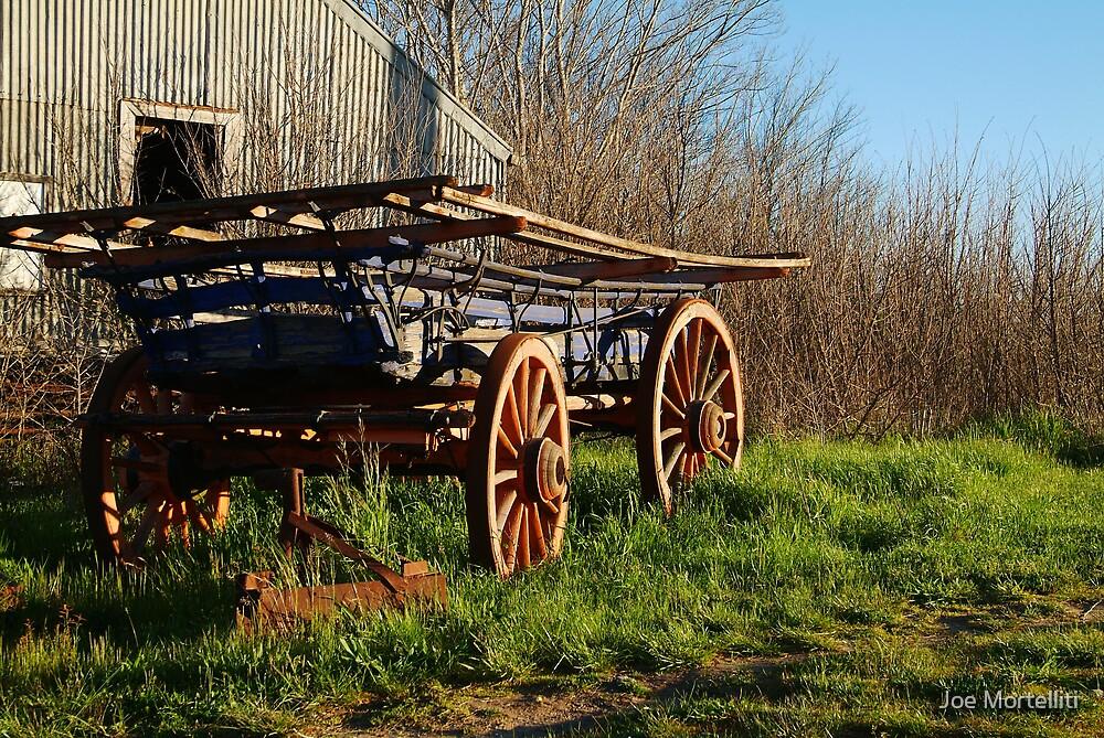 Old Cart, Ascot Victoria by Joe Mortelliti