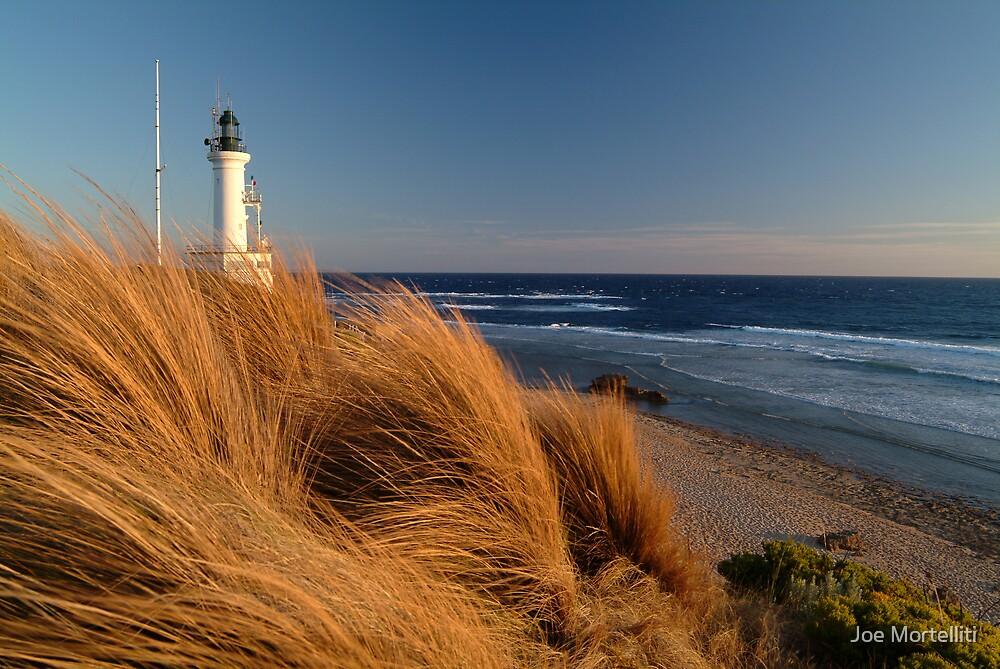 Wind Blown Grasses, Pt Lonsdale Lighthouse by Joe Mortelliti