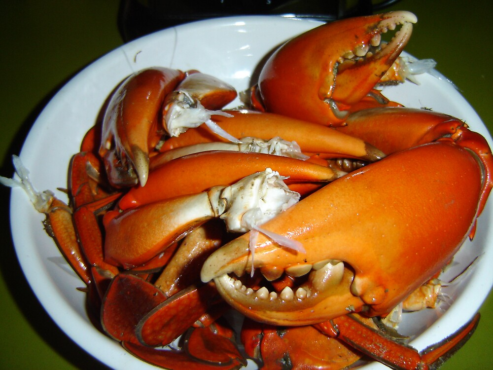 Crab by Snowy