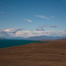 Lago Argentino by nick board