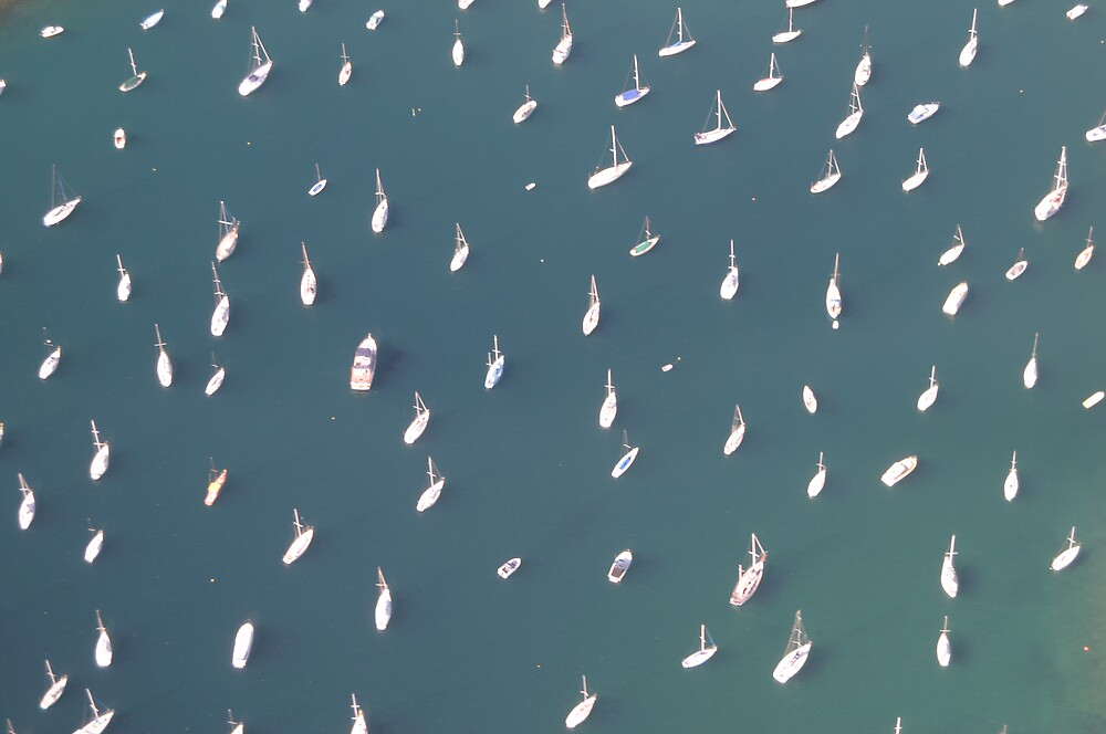 Boats on Pittwater by Allan Steven