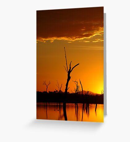Sunrise Gold, Lake Fyans Grampians  Greeting Card