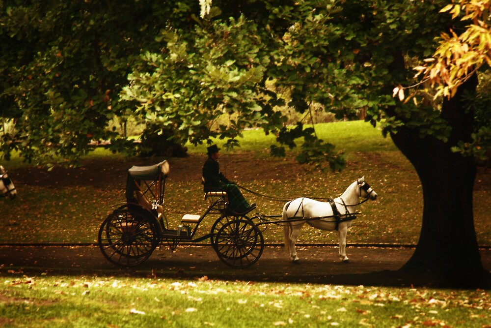 Carriage  by JenStocks