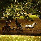 Carriage  by JenStocks
