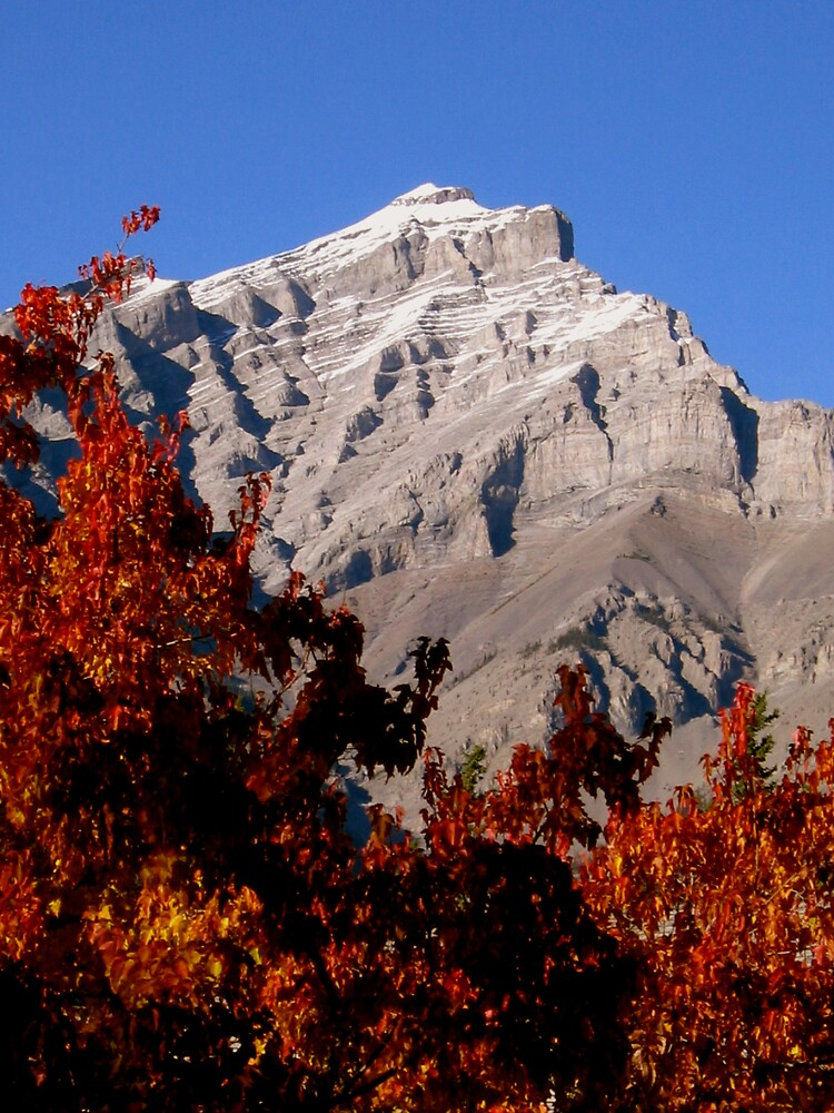 Fall - Banff by marklow