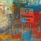 """Woodstock 1969"" by Gail Jones"