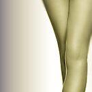 Legs by Edward Shepherd