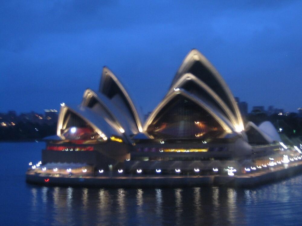 Fuzzy Opera House by nicky