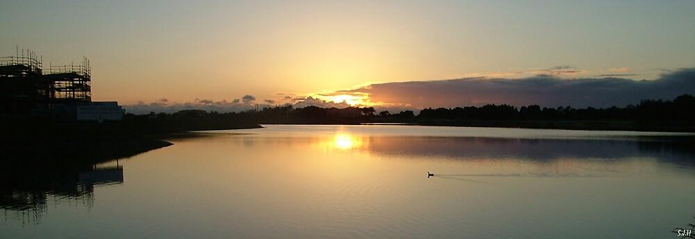 Morning Calm by Samuel Holt