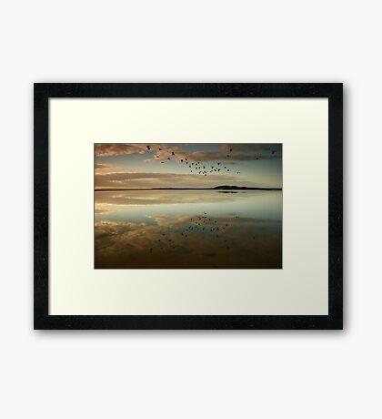 Lake Wollumboola Reflections Framed Print