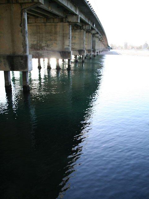 forster bridge by shhe