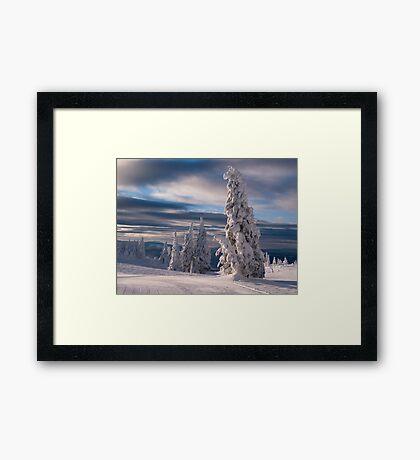 Silverstar Framed Print