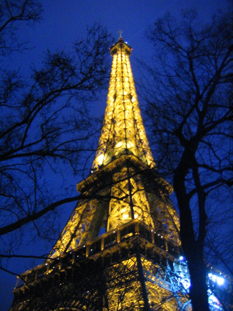 Eiffel Tower by Samuel Holt