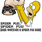 Spider Pug by rossco