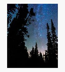 Rocky Mountain Forest Night Photographic Print