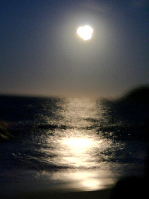 moon shine by shhe