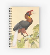 Majestic Hornbill with Huge Beak Spiral Notebook