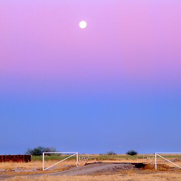 Cattle country,Gulf country.QLD. by mrmatt43