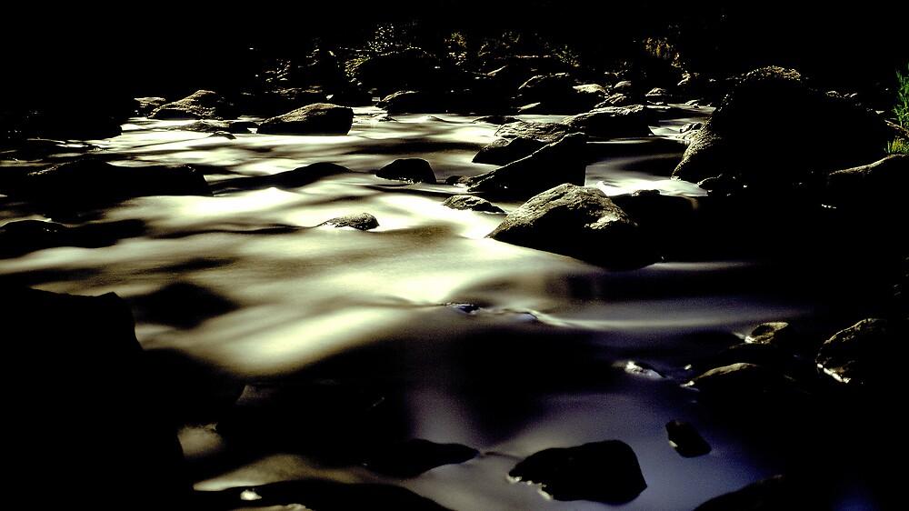 moonlit river by matthew maguire