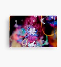 Snowflake & Scarf XIII Canvas Print