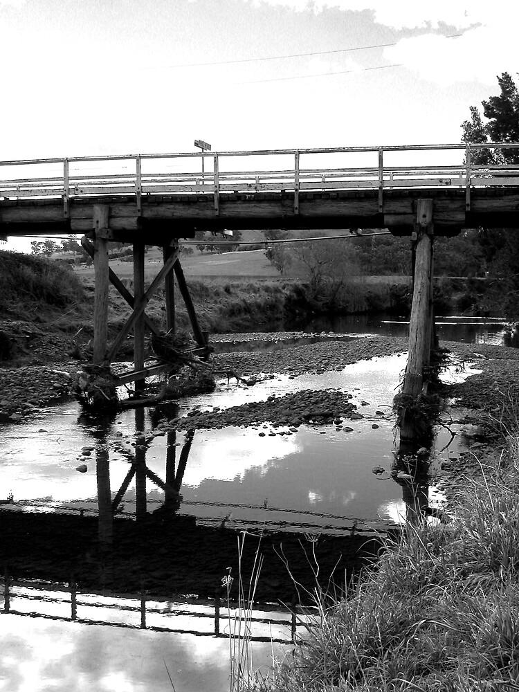 Country bridge by rodneyaf