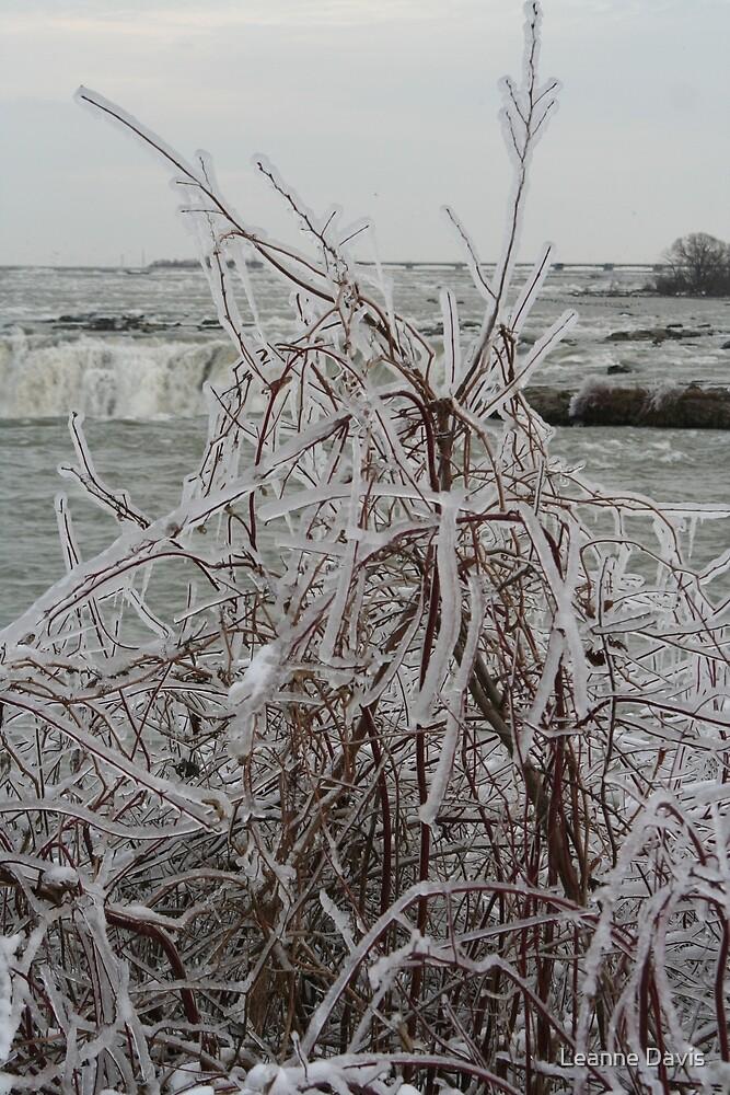 Ice Sculpture 1 by Leanne Davis