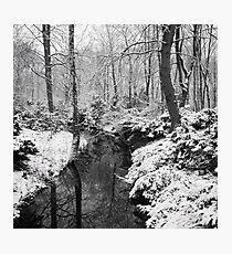 Winter in the Tiergarten, Berlin Photographic Print